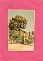 F2803 - Illustrateur E. LESSIEUX - Cap Martin - Entrée De La Villa De L'Impératrice Eugénie - Lessieux