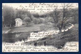 Environs De Bastogne. Château De Rollé. 1903 - Bastogne