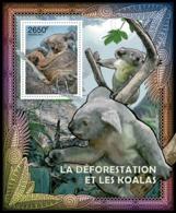 Central Africa 2012 Fauna     Deforestation & Koalas, - Central African Republic