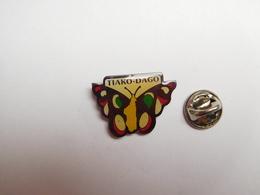 Beau Pin's , Papillon , Tiako Dago , Madagascar - Animals