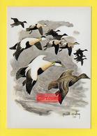 CPA ֎ Animaux ֎  Canard ֎ DUCK  ֎ Signée Illustrateur ֎ HARALD WIBERG - Autres