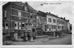 Tintigny Fontaine Aux Lions - Tintigny