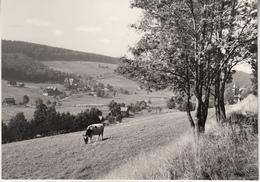 Rehefeld Ak139349 - Rehefeld
