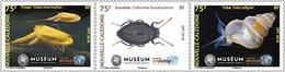 Nieuw-Caledonië / New Caledonia - Postfris / MNH - Complete Set Kleine Dieren 2018 - Nieuw-Caledonië