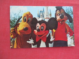 Disneyworld Welcome To The Magic Kingdom--- Mickey Mouse Pluto & Goofy     Ref 3245 - Disneyworld