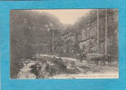 Sassenage ( Isère ) - 1906. - Ancienne Route De Sassenage à Villard De Lans. - Attelage Bœufs. - Sassenage
