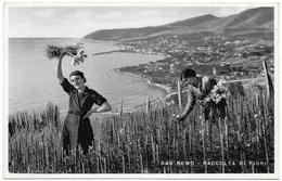 San Remo - Raccolta Di Fiori Unused - Foto Brillante - San Remo