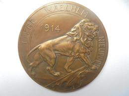 LIEGE-WAELHEM-NIEUPORT-1914 Par P.THEUNIS-126 Grammes-70 Mm - Professionnels / De Société