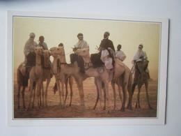 Niger XXXV-E1. Teguidda N'Tessoumt. La Cure Salee. - Geographie