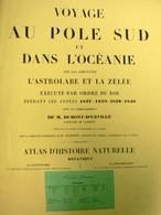 DUMONT D'URVILLE - HERBIER - BOTANIQUE : POLE SUD Et OCEANIE (1837/1840). 62 Lithographies Originales. - B. Plantes Fleuries & Fleurs