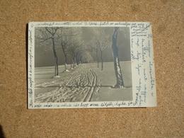 Carte Postale Hongrie Oblitération Budapest 1948 Pour La France - Hongrie
