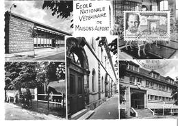 CPSM 94 MAISONS ALFORT ECOLE VETERINAIRE MULTIVUE TIMBRE ET CACHET PREMIER JOUR FDC BICENTENAIRE - Maisons Alfort
