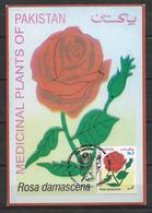 PAKISTAN POSTCARD  ROSE - Pakistan