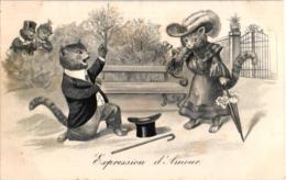 """CHATS HABILLES """"EXPRESSION D'AMOUR""""  REF 59479A - Animali Abbigliati"""