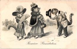 """CHATS HABILLES """"PREMIERE PRESENTATION"""" REF 59482A - Animali Abbigliati"""