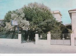 LUCCA - Lido Di Camaiore - Viale Colombo - Guido Pensione Serenissima - Lucca
