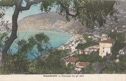 Cartolina - Postcard / Viaggiata - Sent -  Ospedaletti, Panorama. - Imperia