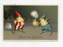 CIRQUE . Pâques Poussin, Poussins Humanisés . Oeuf . Easter Chick, Humanized Chicks. Egg Ostern, Humanisierte Küken. Ei - Pâques