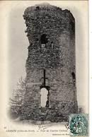22 - CESSON - Tour De L'Ancien Château - Trés Ancienne - France