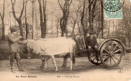 AU PAYS BASQUE - Attelage Basque - PH & Cie 218 - écrite 1919 - Tbe - - Equipaggiamenti