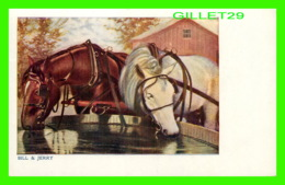 HORSES, CHEVAUX - BILL & JERRY  DRINKING WATER - - Chevaux