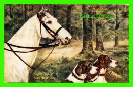 CHEVAUX, HORSES - NOELE PETS - CHEVAL & 2 BEAUX CHIENS - - Chevaux