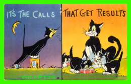 CATS, CHATS - IT'S THE CALLS - THAT GET RESULTS - CHATS NOIR - HUMOUR, COMIC - - Chats