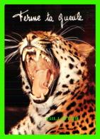 TIGRE - TIGER - FERME TA GUEULE -  COLLECTION ORION - - Tigres
