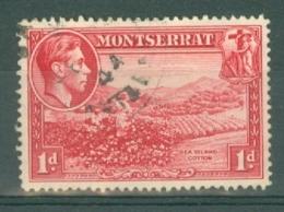 Montserrat: 1938/48   KGVI   SG102a    1d  [Perf: 14]    Used - Montserrat