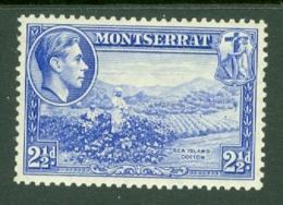 Montserrat: 1938/48   KGVI   SG105    2½d  [Perf: 13]    MH - Montserrat