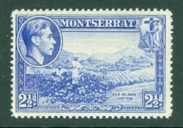 Montserrat: 1938/48   KGVI   SG105a    2½d  [Perf: 14]    MH - Montserrat