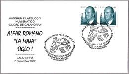 """ALFAR ROMANO """"LA MAJA"""" Siglo I - Roman Oven """"La Maja"""" 1st Century. Calahorra, La Rioja, 2002 - Arqueología"""