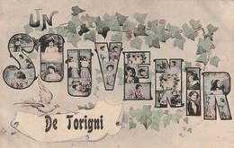 50/ Un Souvenir D De Torigny Sur Vire - Carte écrite En 1907 - France