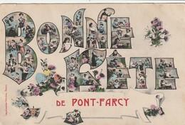 14/ Bonne Fete De Pont Farcy - - Francia