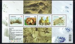 2011  Baby Wildlife Definitives Hare, Fox, Geese, Bears  Souvenir Sheet Of 4 Different Sc 2424  MNH - 1952-.... Elizabeth II