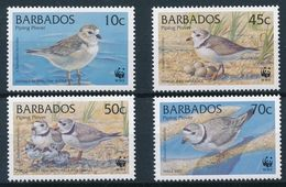 Barbados 1999 - WWF Birds - World Wildlife Fund - Piping Plover MINT - Barbados (1966-...)