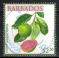 Barbados 2011 - Flora - Local Fruits - Barbados (1966-...)