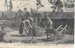 COTE D'OR - DIJON - CHARBONNIERS EN FORET - DRESSAGE D'UN FOURNEAU - PRECURSEUR POSTEE DE DIJON 1903 2 SCANS - Dijon