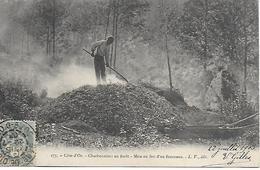 COTE D'OR - DIJON - CHARBONNIERS EN FORET - MISE EN FEU D'UN FOURNEAU - PRECURSEUR POSTEE DE DIJON 1903 2 SCANS - Dijon