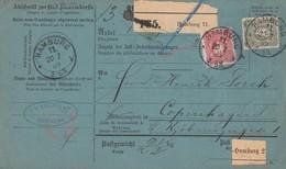 DR Auslandspaketkarte Mif Minr.41,42,44 Hamburg 20.7.89 Gel. Nach Kopenhagen - Brieven En Documenten