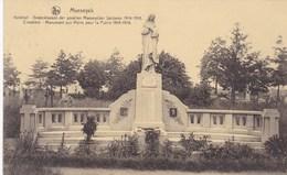 Maaseik, Maeseyck, Kerkhof, Gedenkteken Der Gevallen Maeseycker Soldaten 1914 1918 (pk58234) - Maaseik