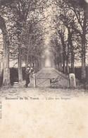 Sint Truiden, Souvenir De St Trond (pk58235) - Sint-Truiden