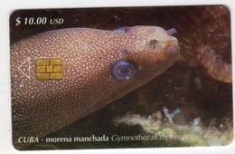 CUBA MORENA MANCHADA 10$ - Cuba