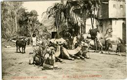 ESPOSIZIONE DI MILANO 1906  Villaggio Eritreo N° 78  Cartolina Ufficiale  Carovana Con Cammelli - Esposizioni