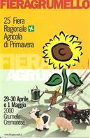 ITALIA - 2000 GRUMELLO CREMONESE (CR) 25^ Fiera Agricola (spaventapasseri) Su Cartolina Speciale - Agricoltura
