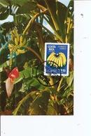 Fruits - Bananes ( CM Du CostaRica De 1980 à Voir) - Fruits