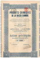 Ancien Titre - Produits Chimiques De La Basse-Sambre - Titre De 1920 - Industrie