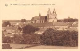 St HUBERT - Panorama D'ensemble, La Basilique Et L'ancienne Abbaye De St. Hubert - Saint-Hubert