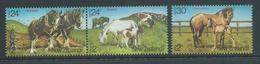New Zealand 1984 Horses Charity Health Set Of 3 - Pair & 2 Singles MNH - Unused Stamps