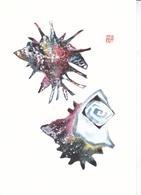 Tsururtaro Kataoka Postcard Unuseded Good Condition - Malerei & Gemälde